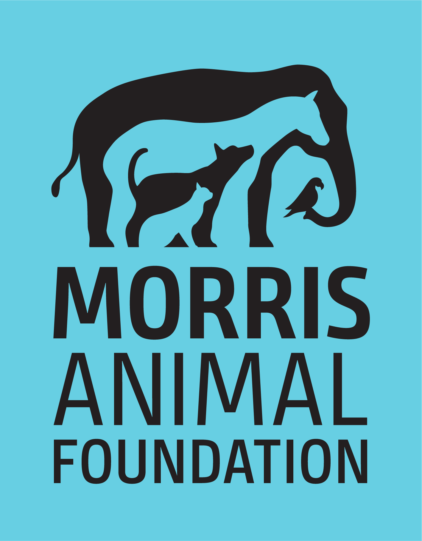 Home Morris Animal Foundation logo light blue