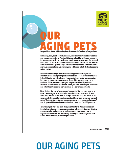 Aging Pets White Paper