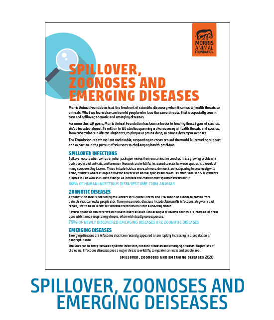 Spillover, Zoonoses and Emerging Diseases White Paper