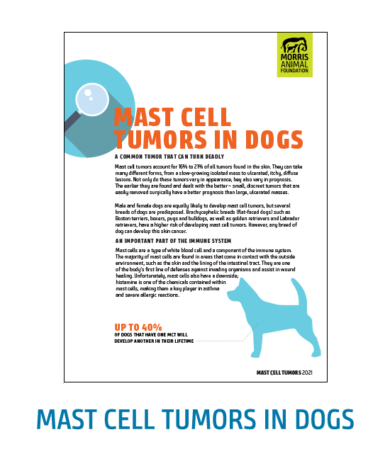 Mast Cell Tumors in Dogs White Paper