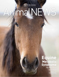 AnimalNEWS 17.1
