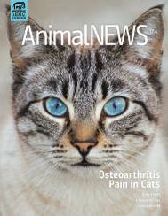 AnimalNEWS 17.4