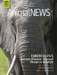 AnimalNEWS 18.1
