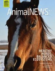 AnimalNEWS 18.3