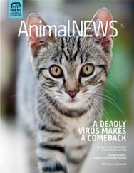 AnimalNEWS 19.1