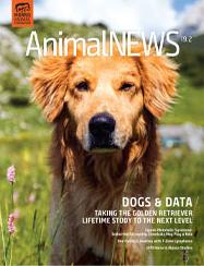 AnimalNEWS 19.2