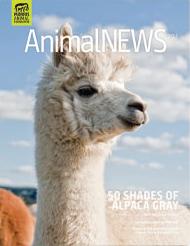 AnimalNEWS 20.1
