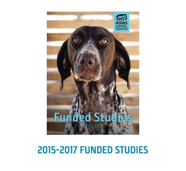 Funded Studies