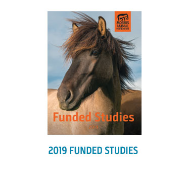 2019 Funded Studies