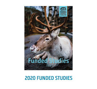 2020 Funded Studes