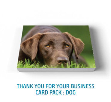 Thank You Card Pack Dog