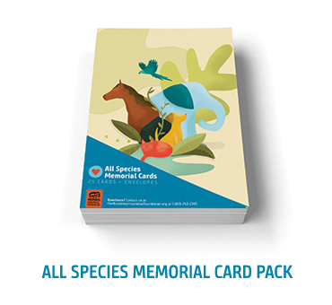 All Species Memorial Card Pack
