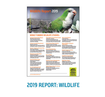 2019 Wildlife Report