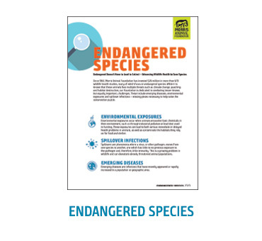 White Paper - Endangered Species