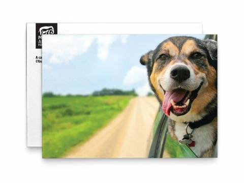 Image of front of the Dog Photo Birthday Card