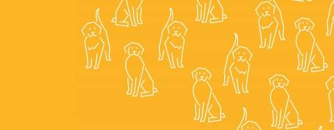 Golden Retriever Icons